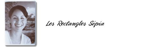 Rectangles Sépia